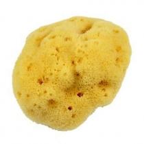 Forsters Silk Sea Sponge M